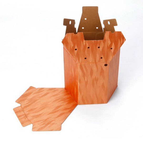 Custom Printed Hexagon Packaging Box1