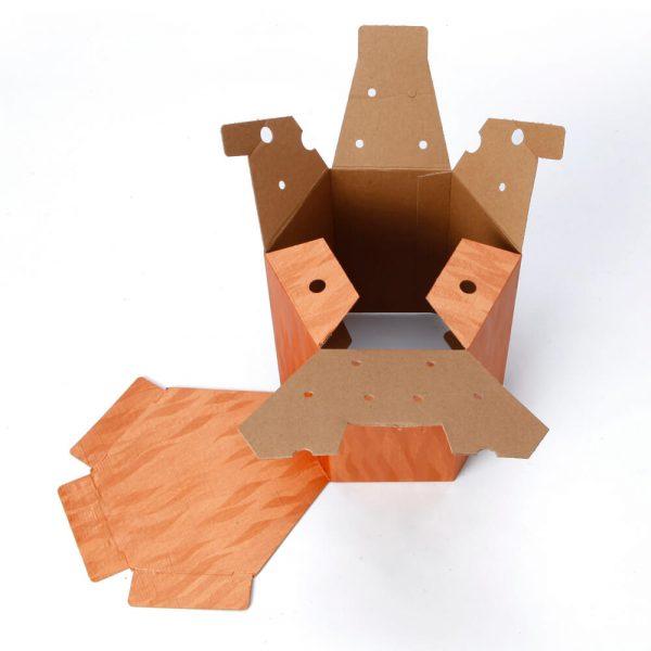 Custom Printed Hexagon Packaging Box2