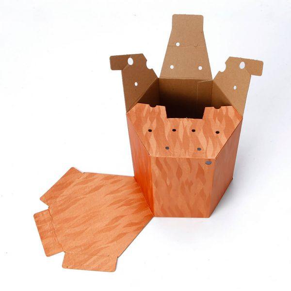 Custom Printed Hexagon Packaging Box3