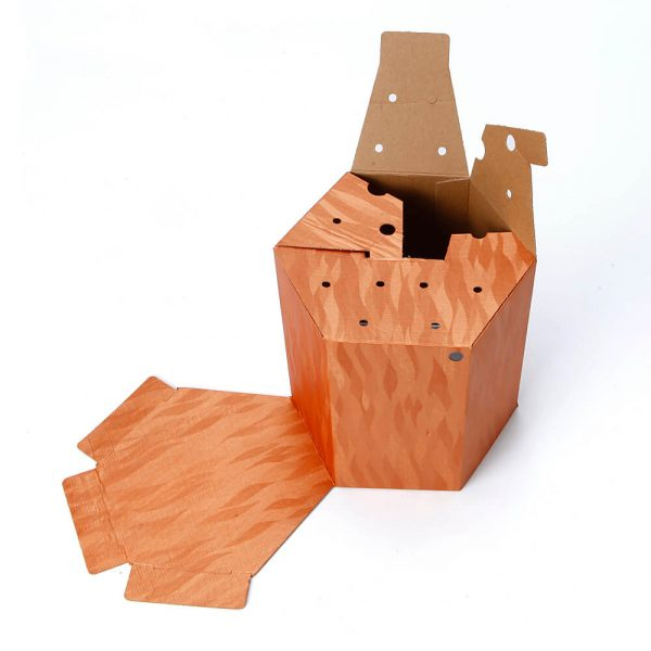 Custom Printed Hexagon Packaging Box4