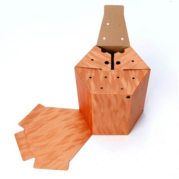 Custom Printed Hexagon Packaging Box5