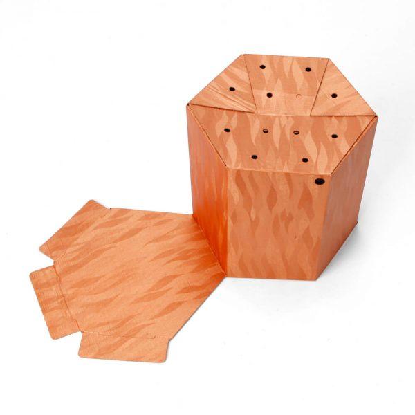 Custom Printed Hexagon Packaging Box6