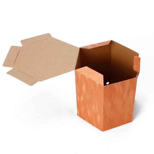 Custom Printed Hexagon Packaging Box7