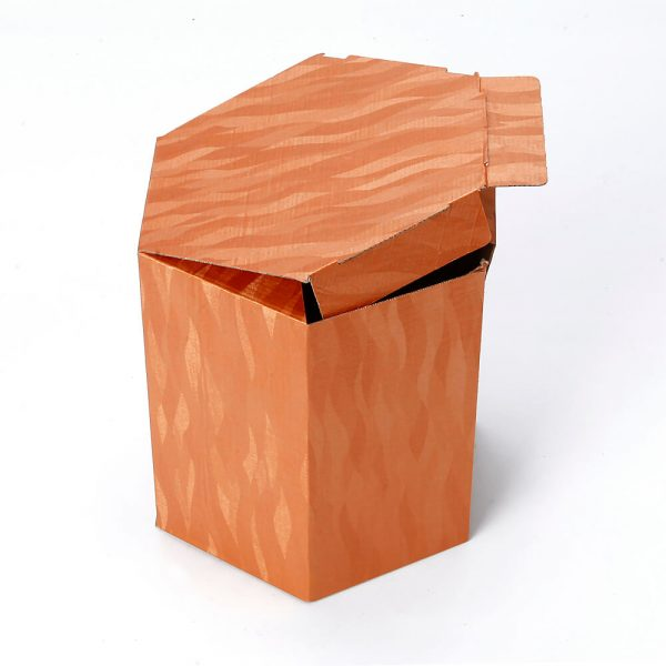 Custom Printed Hexagon Packaging Box9