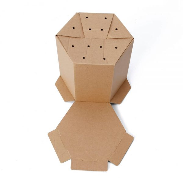 Hexagon Corrugated Box Wholesale7