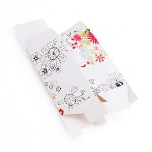 Custom Folding Carton Boxes1