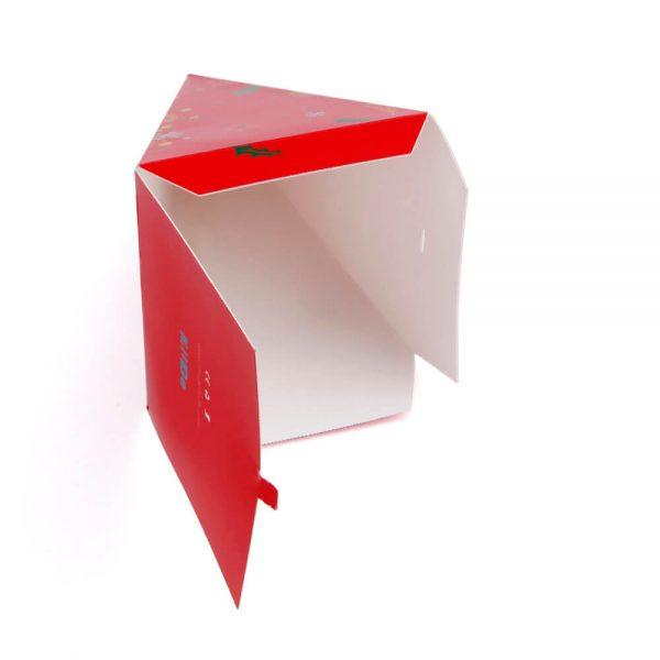 Custom Pyramid Boxes6